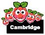 Distributed Computing-Raspberry Pi